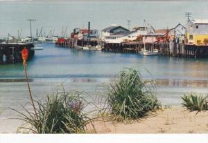 MONTEREY , California , 50-60s ; Fisherman's Wharf