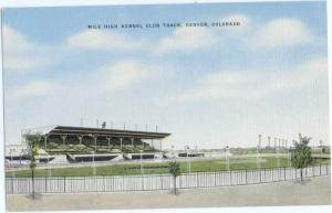 Linen of Mile High Kennel Club Track Denver Colorado CO