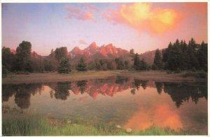 Postcard Grand Teton National Park Wyoming