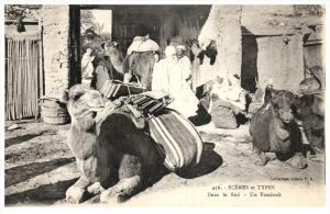 21602 Algeria   dans le sud un fondouk Camels  and Vendors