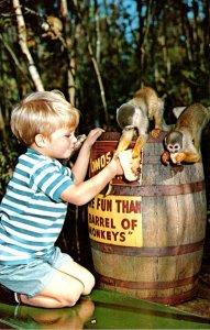 Florida Homosassa Springs U S 19 More Fun That A Barrel Of Monkeys