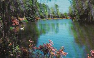Alabama Mobile Bellingrath Gardens Beautiful Mirror Lake
