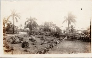 Palm Trees Belize British Governor of Belize Governor's House ?? RP Postcard F52