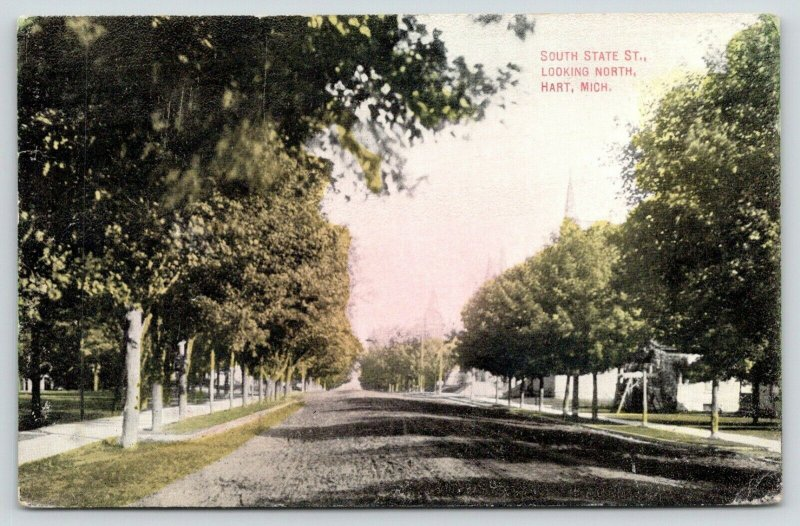 Hart Michigan~Tree-Lined South State Street North is Dirt Road~Porch Steps~1908