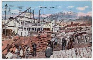 Shipping Cotton