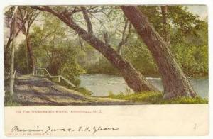 On the Swannanoa River, Asheville, North Carolina, PU-1908