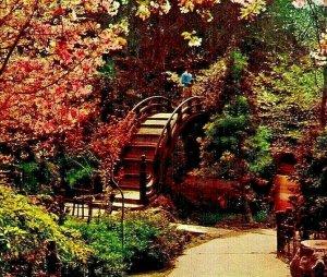 Japanese Tea Garden Golden Gate Park San Francisco CA California Chrome Postcard