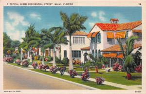 A Typical Miami Residential Street, Miami, Florida, Early Postcard, Unused