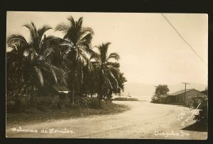 Postmark 1938 Cristobal Canal Zone Aboard SS Virginia Palm Trees Photo Postcard