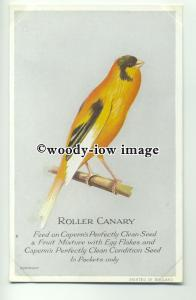 an0222 - Roller Canary selling Caperns Perfectly Clean Seed, Postcard Plain Back
