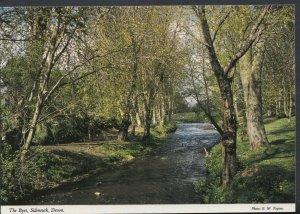 Devon Postcard - The Byes, Sidmouth    RR2872