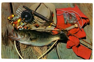 Oversize, Fisherman's Dream, Fish with Rod and Flies  5.5 X 9 inches