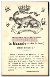 Old Postcard Chateau de Blois Arms Salamander Francois 1er