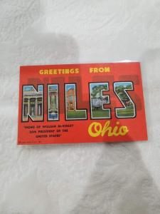 Antique/Vintage Postcard, Greetings from Niles, Ohio