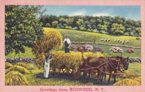 Greetings From Redwood New York 1959
