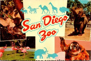 Califronia San Diego Zoo Multi View Koala Bear Elephant Flamingos & Orangutang