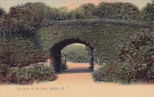 Ivy Arch At The Park Buffalo New York