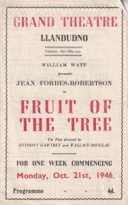 Jean Forbes Robertson Of Peter Pan Fame 1946 Llandudno Welsh Theatre Programme