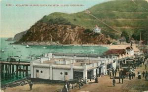 Aquarium Avalon Santa Catalina Island California 1909 Postcard Mitchell 1446