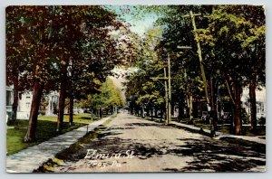 Troy Pennsylvania~Elmira Street Homes~Leaning Telephone Pole~Dirt Road~1911