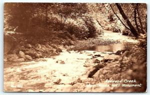 Postcard CA Redwood Creek Muir Woods National Monument RPPC Photo D16