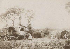 Fortune Green West Hampstead Romany Gipsy Caravan Postcard