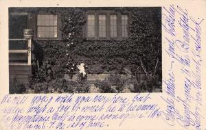 Fresno California Residence Gardens Real Photo Antique Postcard J70255