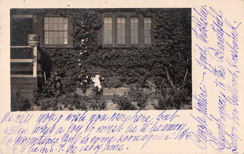 Fresno California Residence Gardens Real Photo Antique Postcard J70255