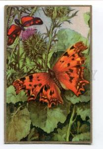 257015 FINLAND Red BUTTERFLY on Flowers Vintage postcard