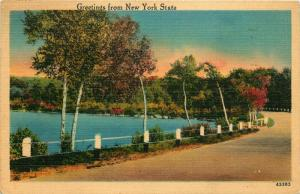 Greetings from New York State, NY, Road by Water, 1940 Vintage Postcard d6193
