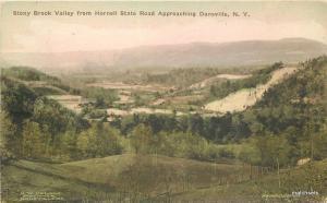 Albertype 1925 Dansville New York Stony Brook Hornell State Road postcard 9082