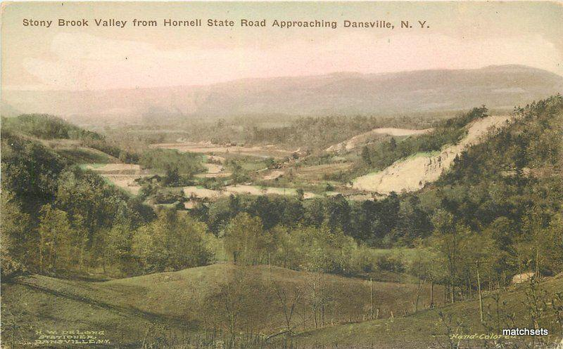 Albertype 1925 Dansville New York Stony Brook Hornell State Road postcard 9082