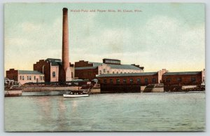 St Cloud Minnesota~Excursion Boat Floats by the Watab Pulp & Paper Mills~c1910