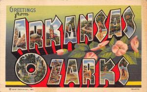 Arkansas Ozarks~Large Letter Linen Postcard~Swimming~Fishing~Birdseye~1939 PC
