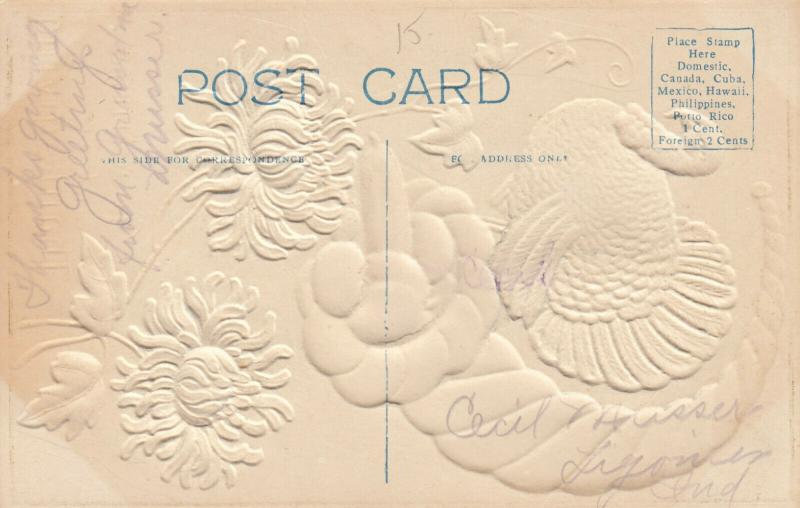 Embossed, Greetings for THANKSGIVING, Wild Turkey, Gourds, 00-10s