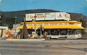 LP15   Salamanca  New York Postcard McNamara's Drive In