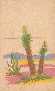 Yucca Wood Postcard , 20-30s