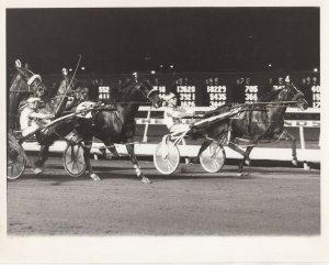 MEADOWLANDS Race Track, Harness Horse Race, GRADE ONE  winner, August 8, 1985