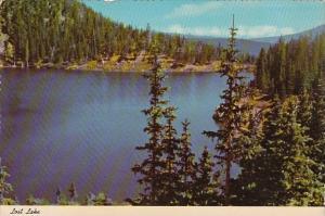 New Mexico Albuquerque Lost Lake