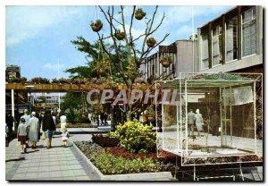 Modern Postcard Holland Rotterdam Lijnbaan shopping promenade