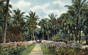 Jungle Trail Palm Beach FL 1910