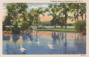Swans at Beauty Spot on Chautauqua Lake NY, New York - Linen