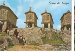 Postal 045496 : Portugal. Arcos de Valdevez. Um trecho tipico de Soajo (A And...
