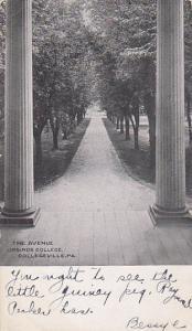COLLEGEVILLE , Pennsylvania , 1901-07; The Avenue , URSINUS College