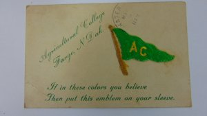 Antique 1910 Agricultural College Postcard posted