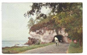 Toad from Carbet to St. Pierre: the tunnel, Martinique, 40-60s