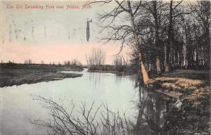 Albion Michigan~Old Swimming Hole~Trees Reflected in Water~1909 Postcard