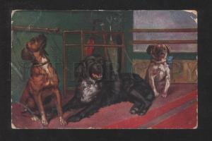 070396 Charming PUG Dogs Etc Vintage Color PC