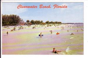 People Swimming on the Beach, Clearwater, Florida