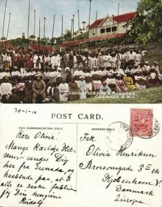 Grenada, B.W.I., Cocoa Pickers and Manager (1910) Stamp